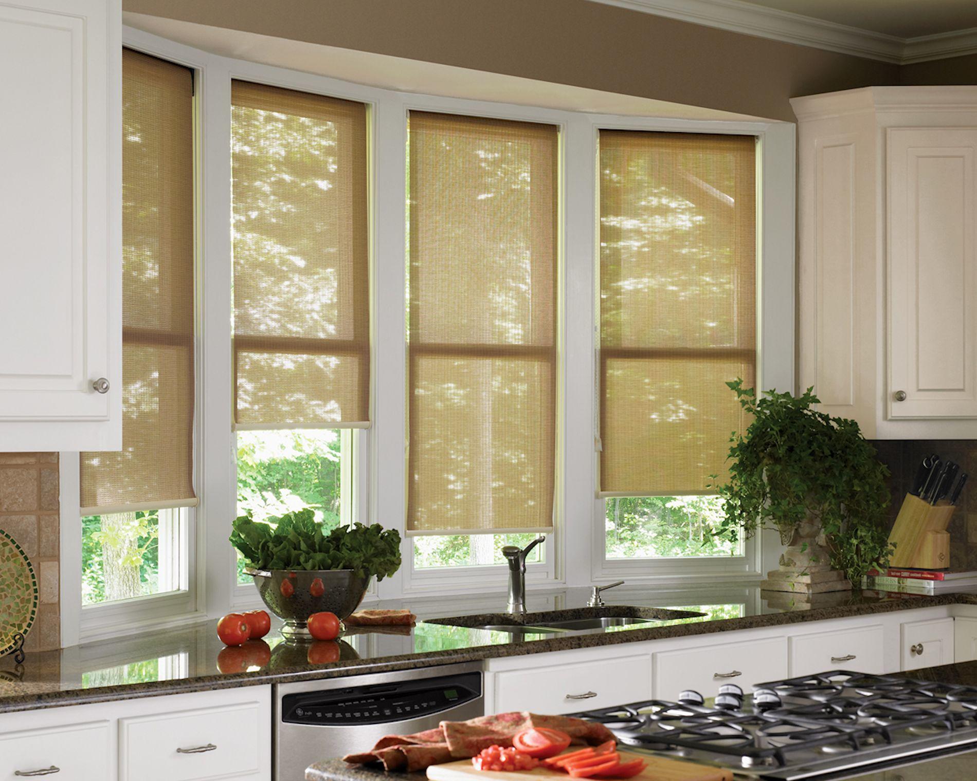 Custom Window Shades