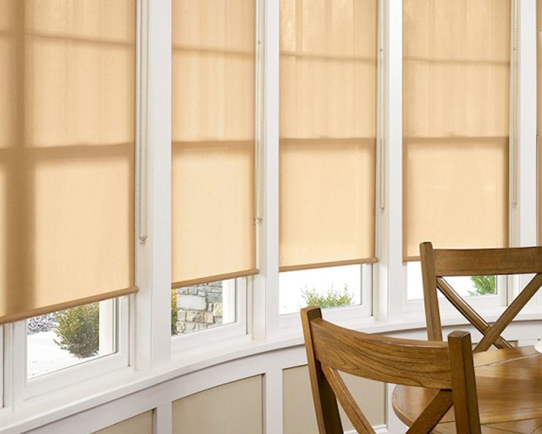 Roller shades covering a window