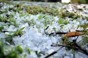 Hail covering the ground after a storm. Starwood Distributors.
