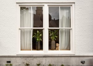 Find the right exterior window for your home today.